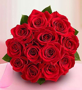 one dozen red roses bouquet only by 1 800 flowers